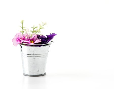 steel bucket: steel bucket with flower on white