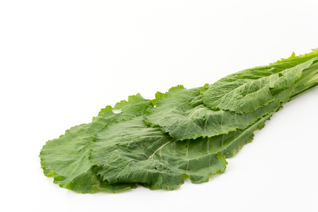 chinese spinach: Chinese Spinach on white background