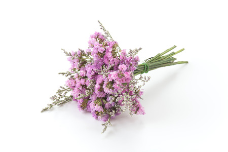 Statice flower bouquet on white background stock photo picture and statice flower bouquet on white background stock photo 44355793 mightylinksfo