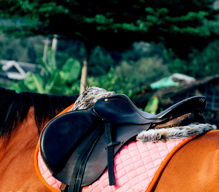 horse saddle: horse saddle - soft focus with film filter Stock Photo