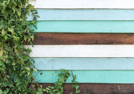 wood textures: Vintage wood textures background - vintage effect Stock Photo