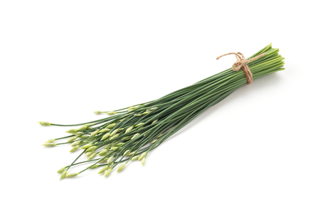 flowering: Chinese chives on white background