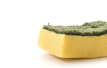 dishwashing: Dishwashing sponge on white background Stock Photo