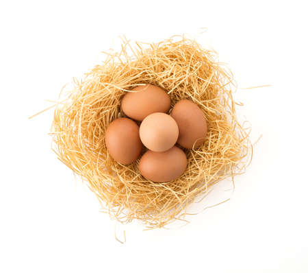 protein crops: hen egg on white background