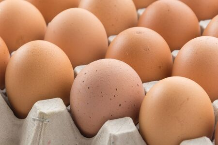 protein crops: hen eggs with panel on whitebackground