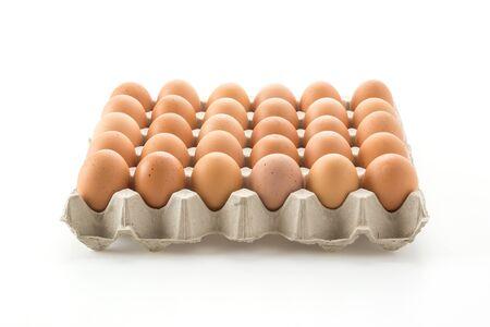 whitebackground: hen eggs with panel on whitebackground