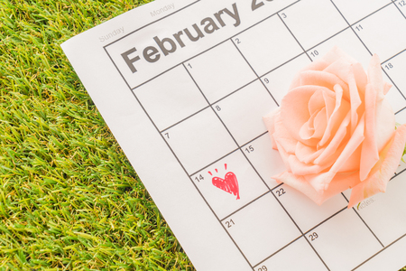 14: rose on the calendar with the date of February 14 Valentines day