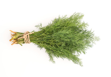 dill: Fresh Dill Weed on white background Stock Photo