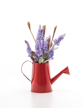 statice and caspia flower in vase on the table