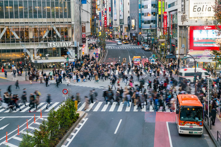 paso de peatones: Tokyo, Japan, Nov 17, 2016: Shibuya Crossing Of City street with crowd people on zebra crosswalk in Shibuya town. Shibuya is a special ward located in Tokyo for shopping at night. Editorial