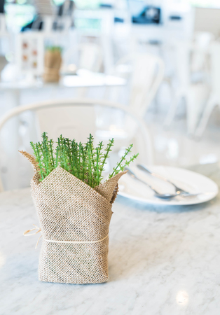 plant decoration on dinning table Stock Photo