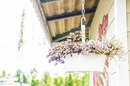 hanging flower pot - vintage filter Stock Photo