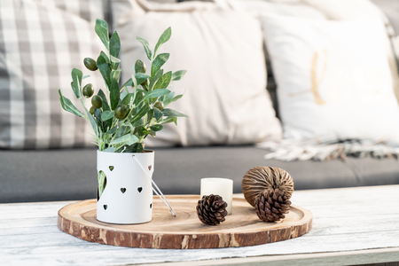 Plant In Vase On Table Decoration In Living Room Stock Photo