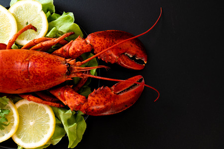 freshly boiled lobster with vegetable and lemon Stock Photo