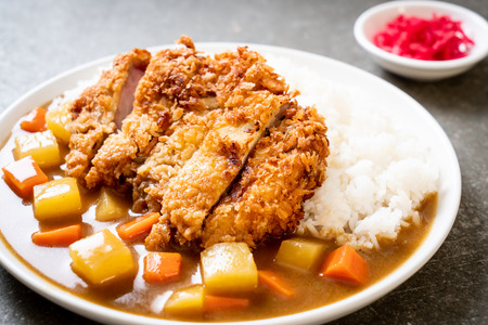 Crispy fried pork cutlet with curry and rice - Japanese food style 스톡 콘텐츠 - 122134282
