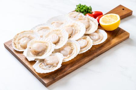 fresh shell scallop on wood board