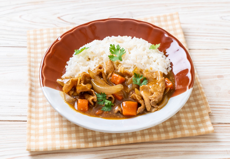 Japanese curry rice with sliced pork, carrot and onions - Asian style Reklamní fotografie