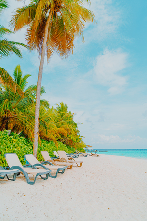 beach chair with tropical Maldives resort hotel island and sea background Reklamní fotografie