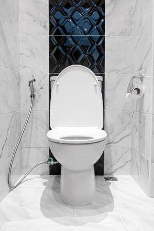 flush toilet in bathroom interior