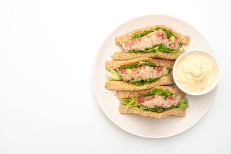 Homemade Tuna Sandwich isolated on white background