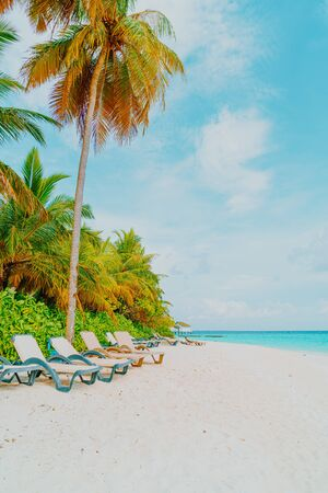 beach chair with tropical Maldives resort hotel island and sea background Banco de Imagens