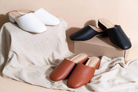 Beautiful woman fashion leather shoes 写真素材