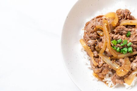 beef sliced on topped rice (GYUDON) - Japanese food style Foto de archivo - 135502121