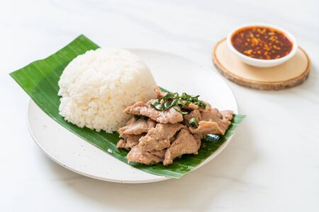 rice with grilled pork garlic - Asian food style Banque d'images