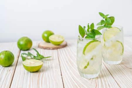 iced lime soda with mint - refreshing drink Imagens