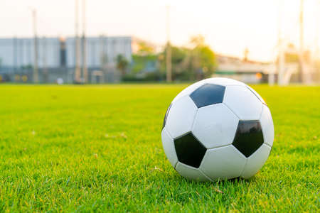 Soccer ball on the football field background with copy space Stockfoto