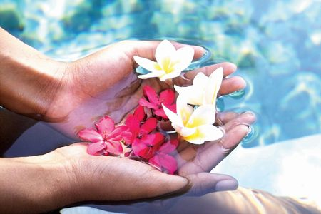 unknown age: High angle view of flowers in a womans hands