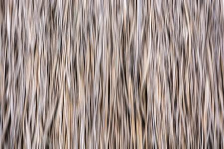 thatch: Path blur thatch roof background