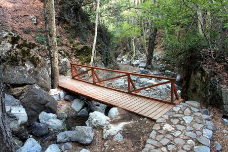 Wooden Footbridge on Forest Trail Stock Photo - 5409551
