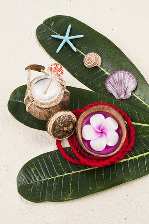 Flower candle in the coconut shell
