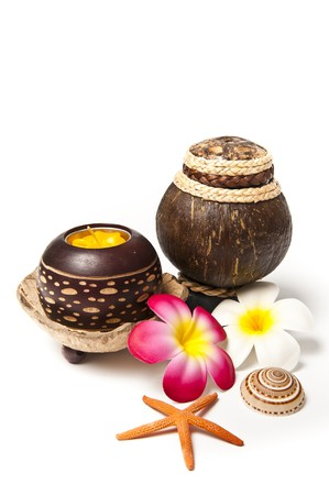 Natural coconut shell pot photo