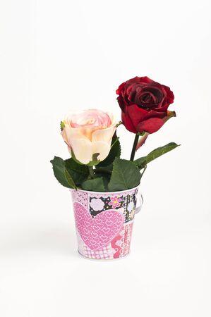 Dos rosas en el cubo Foto de archivo