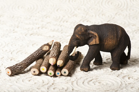 Wooden elephant with wooden color pencil