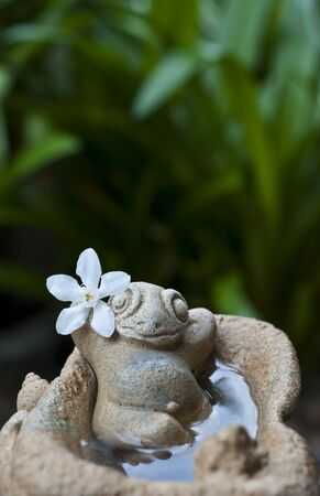 Ceramic frog in relaxing action