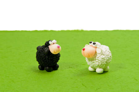 Black and White sheeps on green grass look up blank area Stock Photo