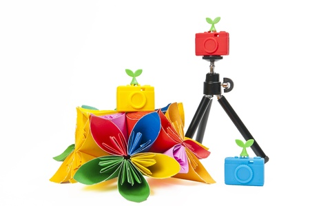 Colorful silicon camera with colorful flower