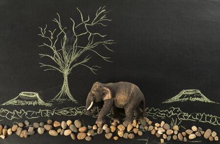 lonely elephant in the deforest by human Stock Photo - 19492500