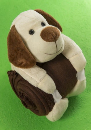 Dog doll hug brown blanket in the green background Stock Photo - 19835395