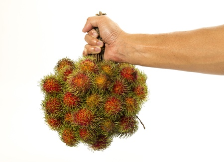 One hand hold bush of rambutan isolated on white background Stock Photo - 19835422