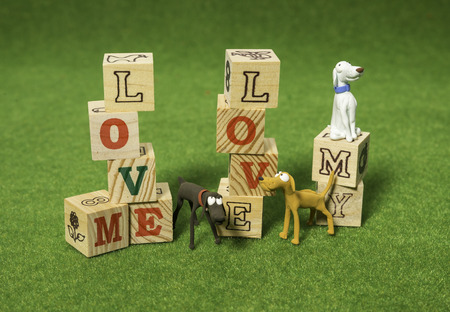Love me love my dog alphabet blocks Stock Photo