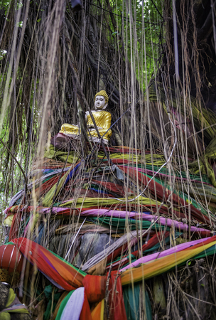 Buddha statue on banyan tree with colorful ropes