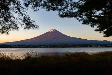 Fuji Mountain with silhouette frame of tree