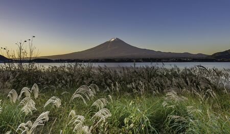 foreground green grass with Fujisan Mountain background Stock Photo