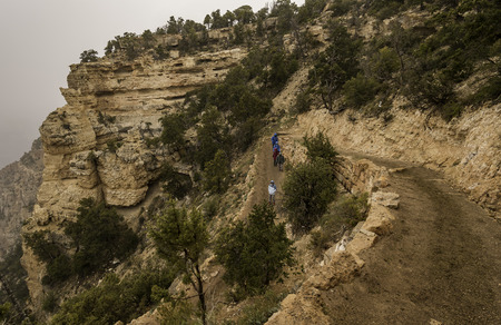Tourist group walking along the trail of Grand Canyon