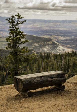 Natural tree bench at Bryce Canyon