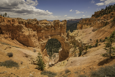 bryce canyon: View of red rocks in Bryce Canyon Stock Photo